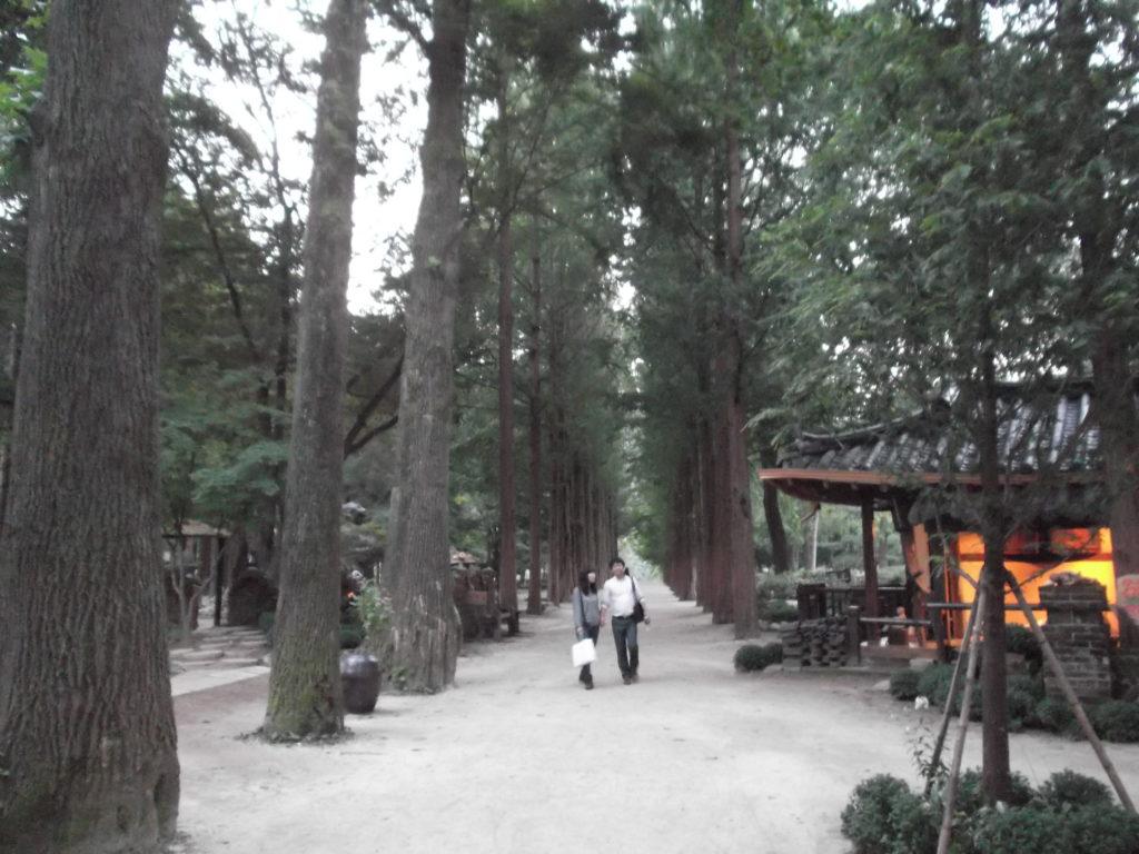 Promenade auf Nami Island bei Seoul